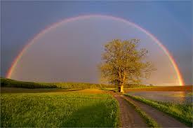 Wie entsteht eigentlich ein Regenbogen?
