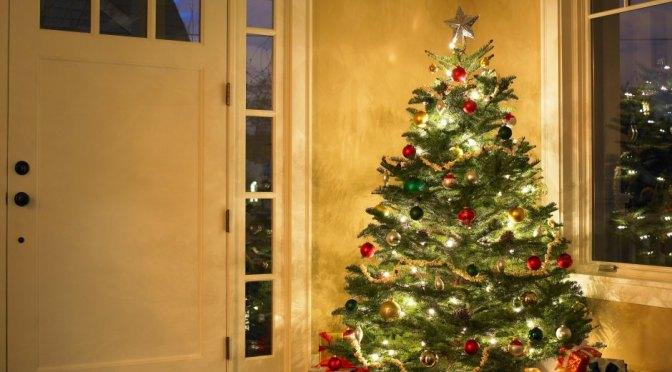 Woher kommt der Brauch des Weihnachtsbaums?